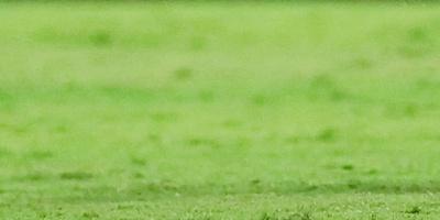 Flamengo manda en Brasil y Palmeiras vuelve a ser su escolta