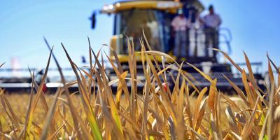 Brasil prevé una reducción del 1,0 % en su cosecha agrícola de 2020