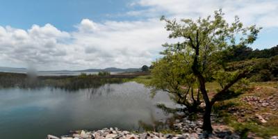 Intendencia de Maldonado y OSE trabajan para atender la calidad del agua en Laguna del Sauce por cianobacterias