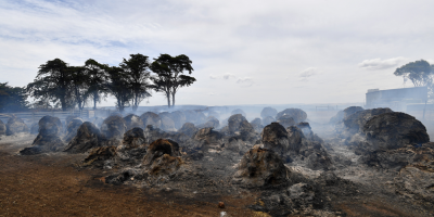 Los fuegos en Australia casi suman en 3 meses las emisiones anuales del país