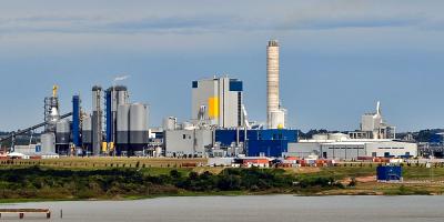 Movimiento por un Uruguay Sustentable elevó carta pública a presidente de UPM