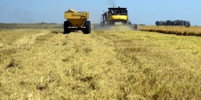El sindicato de trabajadores rurales reclama más medidas para evitar el riesgo de contagio de Covid-19