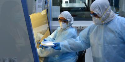 """Científicos uruguayos elaboran 10.000 kits de testeo en """"récord"""" de un mes"""