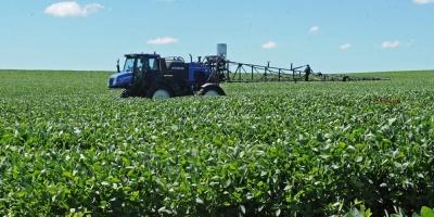 Autoridades señalan bajo rendimiento de soja