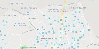 La Intendencia de Maldonado sigue trabajando para erradicar los asentamientos