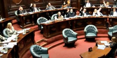 El Senado aprobó la LUC con 18 votos en 31