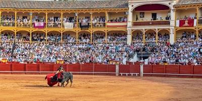 Madrid suspende las corridas de toros; Andalucía y Castilla-La Mancha las mantienen