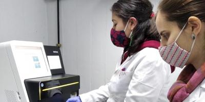 Identificaron nuevos cambios genéticos o mutaciones en la muestras de Covid 19 en Uruguay