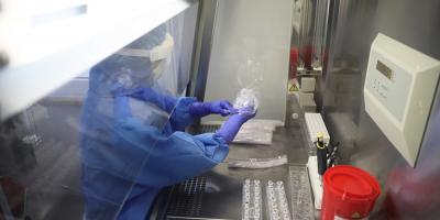 Científicos de España, Portugal e Italia estudian con ADN el origen de Colón