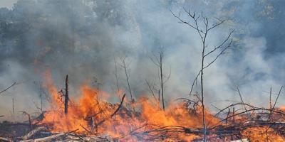 Bomberos controlaron dos incendios forestales que afectaron a Soriano y Rivera