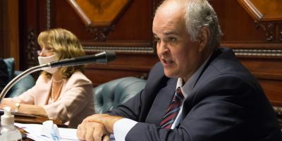 """Penadés expresó preocupación por eventual """"fogoneo de incidentes"""" para generar inestabilidad"""