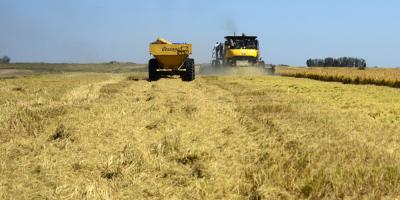 El Congreso de Perú aprueba ley agraria en medio de grave crisis del sector