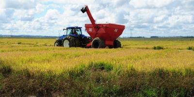 Brasil recogió cosecha récord en 2020 y volverá a hacerlo en 2021