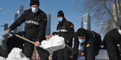 Más de 649.000 árboles resultaron dañados por la gran nevada registrada en la ciudad de Madrid