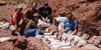 El titanosaurio más antiguo, hallado en la Patagonia Argentina