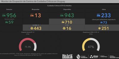 Salud Pública lanzó un monitoreo en tiempo real de la ocupación en CTI