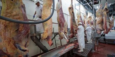 La exportación de carne uruguaya creció 20 % en el primer trimestre del año