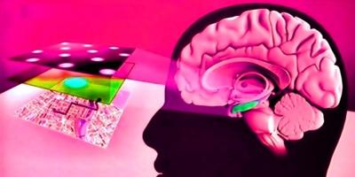 El coronavirus no infecta el cerebro, pero puede causarle importantes daños