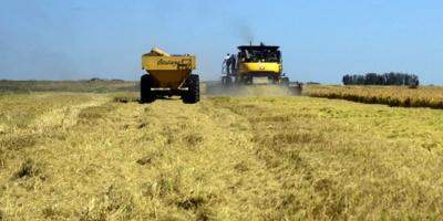 Expertos dicen que agricultura digital es clave para el desarrollo en América