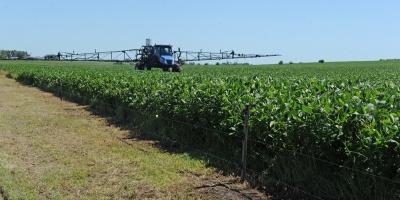 Fuerte crecimiento de las exportaciones de soja
