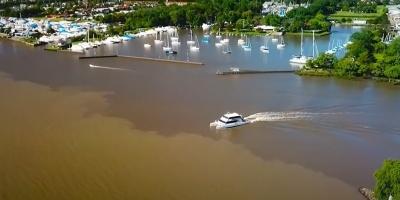 Comenzará a operar en breve una frecuencia fluvial entre Carmelo y Tigre