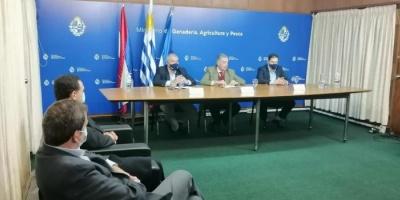 MGAP alerta ante posibles ingresos de peste porcina y HLB